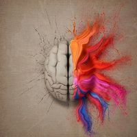 הכוח במוח
