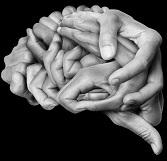 המוח ושבעת החטאים